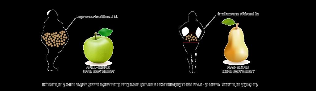 LEANER-BODY-IMAGE-1
